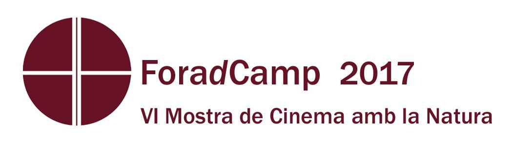 Logo FDC 2017